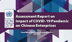 Impact of COVID-19 Pandemic on Chinese Enterprises